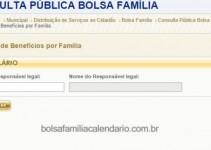 consulta bolsa familia